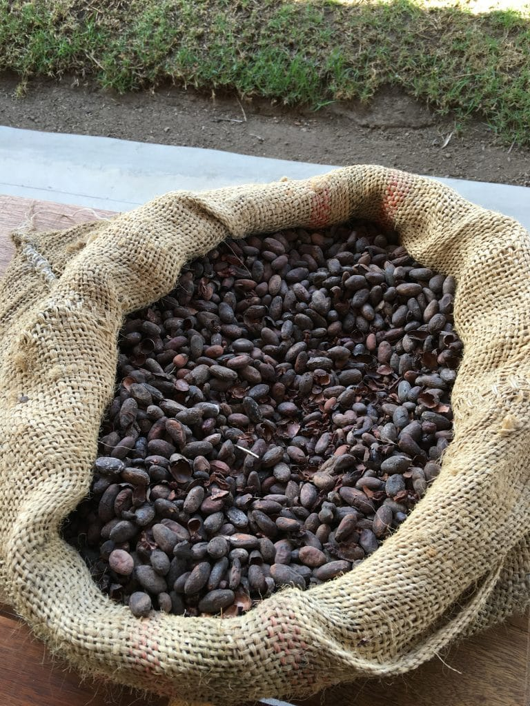bag of chocolate cacao beans